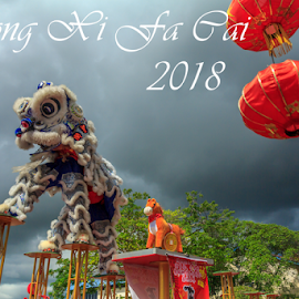 Chinese new year lion dance part eleven by Daimasala Abdullah - Typography Captioned Photos ( chines motif, chines new year 2018, plum blossom, illustrations, promotion, blossom, chines, lantern, free, cliparts, vector, calligraphy, layout, festival, year, flowers, design elements, banner, china, 2018, chines painting, chines pattern, pop up baner, marketing, backgrounds, advertisement, seasons greetings, sale, discount, holiday, new, golden frame, red, chinese decoration, poster, celebration, shopping, packet, voucher, chinese new year, design, chinese calligraphy )