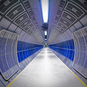 London Bridge Shuttle Pad. by Sorin Bogdan - Buildings & Architecture Other Interior ( pad, london, 2013, tube, station, blue, shuttle, milions, bridge, gates )
