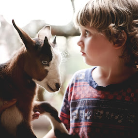 What Mom? by Annamarie Dearr - Babies & Children Children Candids ( love, goats, animals, life, sweet, farms, farm life, lifestyle, outdoors, adorable, kids, cute )