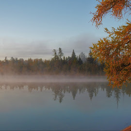 Dawn Reflections by Kathy Woods Booth - Landscapes Waterscapes ( michigan, reflection, foggy, dawn, fog, reflections, daybreak )