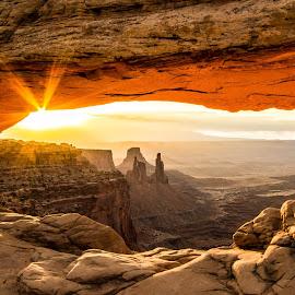 Golden Moment by Tom Jackson - Landscapes Deserts