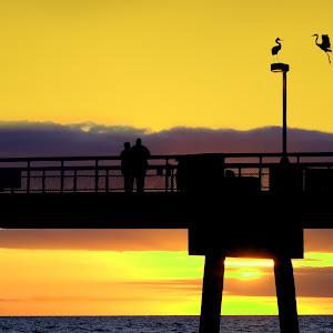 FWB Sunset Silouette6.jpg