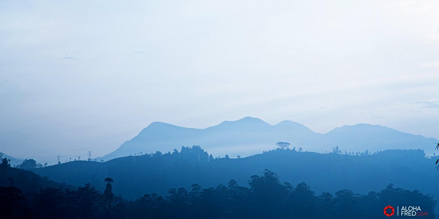 0070 - Sri Lanka - CP1A7339