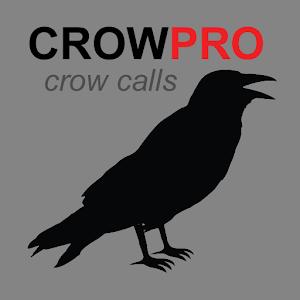 Crow Calls - BLUETOOTH -No Ads For PC / Windows 7/8/10 / Mac – Free Download