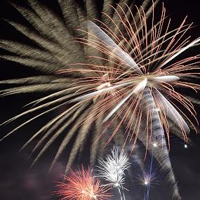 by Thomas Fitzrandolph - Public Holidays July 4th ( nikon d3100, royalton ny, celebrations, niagara county ny, 4th of july, fireworks, night )