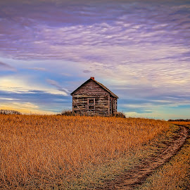Path Home by Scott Hryciuk - Buildings & Architecture Decaying & Abandoned ( field, path, house, prairie, decay, abandoned )