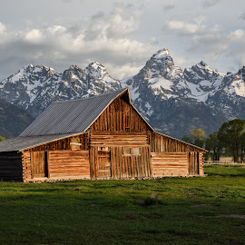 Warm Awakening by Givanni Mikel - Landscapes Travel ( mormon, barn, sunrise, teton, row )
