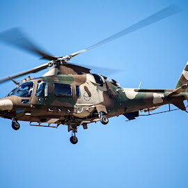 Agusta by Arisha Singh - Transportation Helicopters ( helicopter, air force, south africa, saaf, a109, agusta, camouflage )