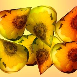 Cones by Zsuzsanna Szugyi - Digital Art Abstract