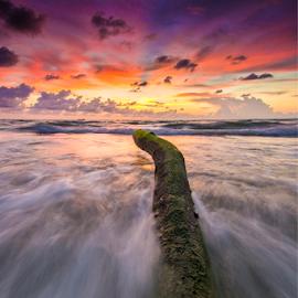 Into sunset by Andrew Micheal - Landscapes Sunsets & Sunrises ( waterscape, sunset, beautiful, seascape, beach, sunrise, wonderful )