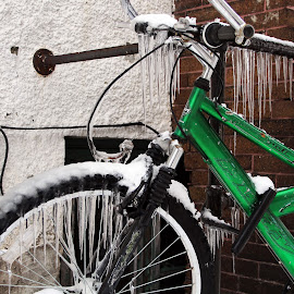 Whittier in Winter, Minneapolis, MN USA by Jo Brockberg - City,  Street & Park  Neighborhoods ( icy, brick, street, icicles, apartment, house, icicle, bicycle, alley, minnesota, bike, cold, ice, minneapolis, snow, stucco, chimney, green, neighborhood, winter, window, stand, outdoor, local, wall )