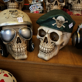 Skull in many versions by Luka Mitrović - Artistic Objects Still Life ( skulls, life, art, lifestyle, military,  )