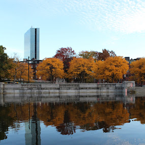 Autumn Across the Charles River by Karina Zawilinski - City,  Street & Park  City Parks ( sky, reflection, skyscraper, clouds, trees, stone, foliage, path, fall, leaves, symmetry, river, autumn )