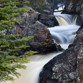 Cascade River Waterfalls by Jill Beim - Landscapes Waterscapes ( water, waterfalls, green, forest, landscape, river )