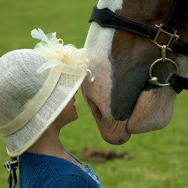 Love at first sight by Kathryn Potempski - Babies & Children Children Candids ( portait, girl, horse, funny, clydesdale, candid, cute, hat, animal )