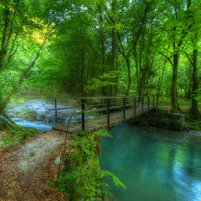 Green paradise by Boris Frković - Landscapes Forests ( vir, brod, green, kupa, creek, gorski, bridge, paradise, curak, kupi, kotar, zeleni )
