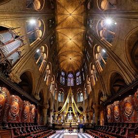 Notre-Dame de Paris by Sebastien Gaborit - Buildings & Architecture Architectural Detail ( paris france notre-dame, famous landmarks )