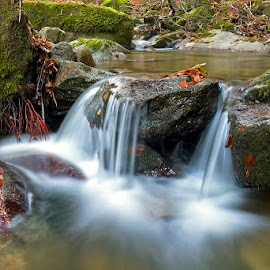 So smooth by Siniša Almaši - Nature Up Close Water ( water, up close, natural light, forest, landscape, nature, tree, cascade, view, stones, rocks, light, river )