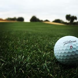 Lying 1 by Bert Jones - Sports & Fitness Golf ( golf, bertjonesphotography )