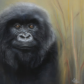 Bohlale by Linda Woodward - Painting All Painting ( mammals, animals, nature, apes, wildlife, gorilla )