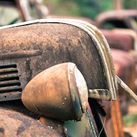 Ford Graveyard 2 by Stephanie Snow - Transportation Automobiles