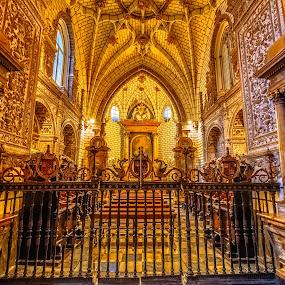 catedral de Toledo by Roberto Gonzalo Romero - Buildings & Architecture Places of Worship ( toledo, catedral,  )