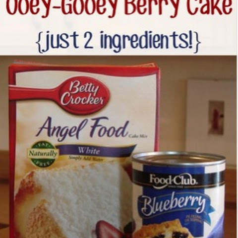 Gooey Blueberry Angel Food Cake Dessert Recipe {2 ingredients!}