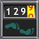 Walking Odometer Pro