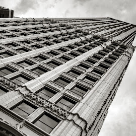 This End Up by Rob Heber - Buildings & Architecture Architectural Detail ( old, fancy, ornate, tall building, brick, street, office building, city, skyscraper, offices, mortar, cloudy, perspective, downtown, classic, balcony, clouds, leaning, vintage, windows, architrecture, angle, urban, pattern, bulding, antique )