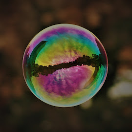 Florence Soap Bubble by Jason C Robinson - Abstract Water Drops & Splashes ( rainbow, reflections, bubble, soap bubble, floating, tuscany, florence, soap, italy, arno, tower )