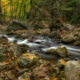 Autumn by the river by Plamen Petkov - Landscapes Forests ( nature, autumn, long exposure, landscape, river )