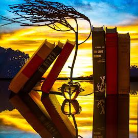 by Lisa Hendrix - Artistic Objects Still Life