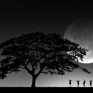 Dance-under-the-moonlight-2.jpg