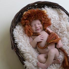 by Nicole Ferris - Babies & Children Babies ( lion, newborn photography, sleeping, smile, baby boy, newborn, grin )