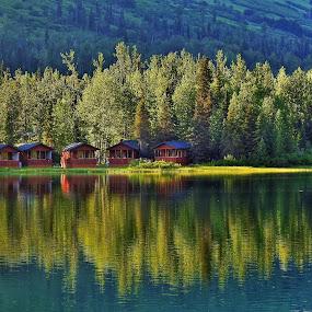 Summer At The Lake by Patricia Phillips - Landscapes Travel ( lakes alaska summit - lake summer-cabins )