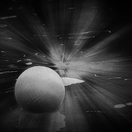 Abstract - Solar System The Lost Planet in B&W by Sherry Hallemeier - Abstract Macro ( ball, system, unknown planet, white, planets, swimming pool, black, solar, abstract, black and white, summer, fun )