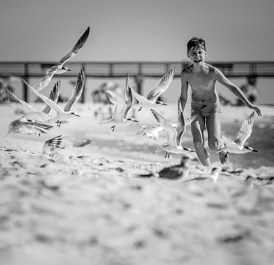 ... by Remo Daut - Babies & Children Child Portraits ( naples, sea, pier, beach, fun, birds )