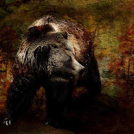 Bear Hunt by Angel Bradshaw - Digital Art Animals ( nature, popular, art, trees, wildlife, forest, rocks )
