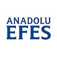 Efes Ethics Code