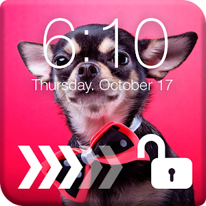 Download Chihuahuas Dog Screen Lock For PC Windows and Mac