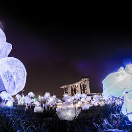 MOONFLOWER Yun | Singapore i Llight Marina Bay '17 by Bjorn Ho - Digital Art Things