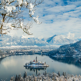 by Mario Horvat - Landscapes Mountains & Hills ( water, sneg, touristic, winter, slovenija, church, snow, slovenia, bled, lake, travel, jezero, island )