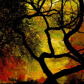 Tree in Silhouette by Edward Gold - Digital Art Things ( red, orange, digital photography, green, colorful background, yellow, artistic, digital art, tree silhouuette,  )
