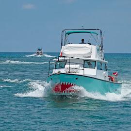 Jaws by Sandy Friedkin - Transportation Boats ( ocean, fishing, dive boat, water, boat )