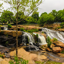 Falls Park at the Reedy by Brendon Hallman - Nature Up Close Water (  )