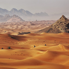 Winter morning in desert by Al Mamun Abdullah - Landscapes Deserts ( sands, dunes, desert, biking, morning, landscape )