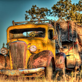 by Jon Morgan - Transportation Automobiles