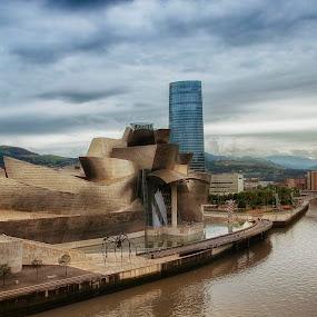 Guggenheim  by Daly Sda - Buildings & Architecture Public & Historical ( bilbao, guggenheim, cityscape,  )