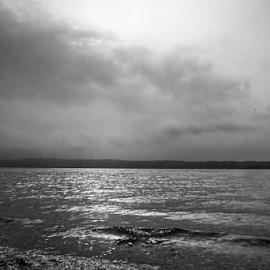 Puget Sound  by Todd Reynolds - Black & White Landscapes