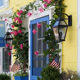 Blue Door by Lynn Chendorain - City,  Street & Park  Markets & Shops ( shop, stire, flags, vine, door, mini mall, decor, lamps, climbing, market, pinks, blue, flowers, bougainvillia )